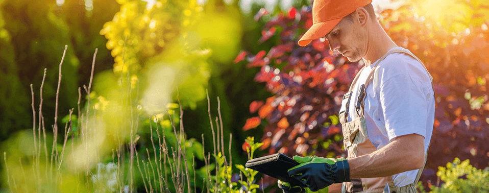 Pro de l'Aménagement paysager ? Trouvez vos matériels Espace Vert & TP d'occasion facilement
